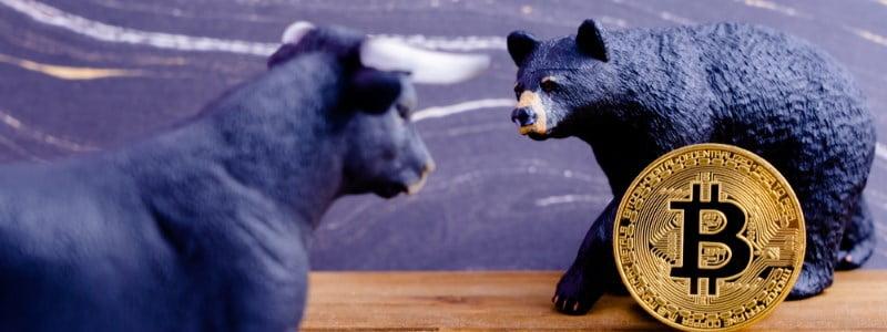 Crypto Trader vs Crypto Investor